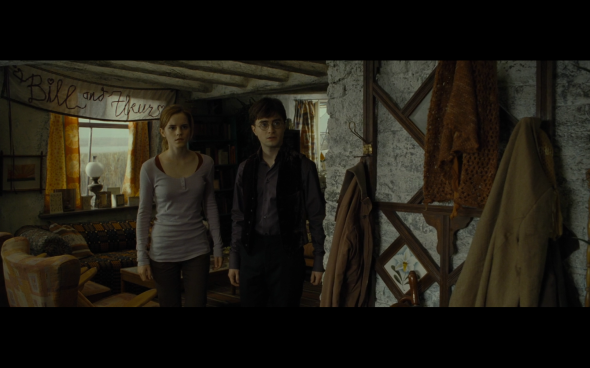 Harry Potter and the Deathly Hallows Part 1 - 329