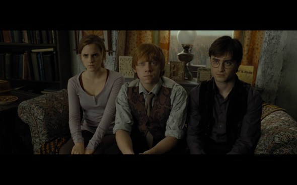 Harry Potter and the Deathly Hallows Part 1 - 336