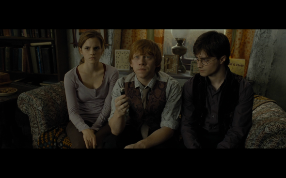 Harry Potter and the Deathly Hallows Part 1 - 338