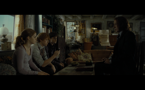 Harry Potter and the Deathly Hallows Part 1 - 339