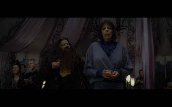 Harry Potter and the Deathly Hallows Part 1 - 362