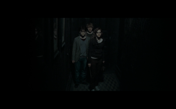 Harry Potter and the Deathly Hallows Part 1 - 462