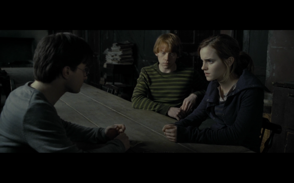 Harry Potter and the Deathly Hallows Part 1 - 478