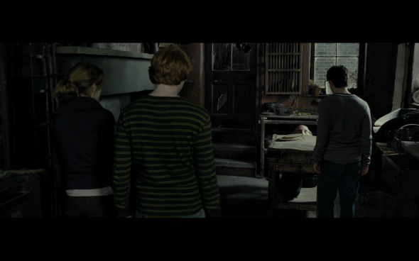 Harry Potter and the Deathly Hallows Part 1 - 482