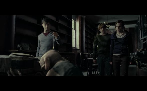 Harry Potter and the Deathly Hallows Part 1 - 485