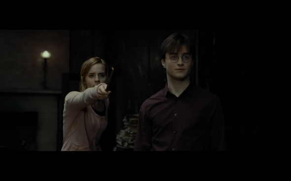 Harry Potter and the Deathly Hallows Part 1 - 519