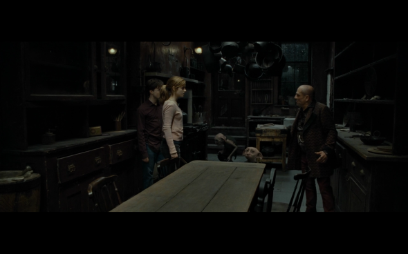 Harry Potter and the Deathly Hallows Part 1 - 521