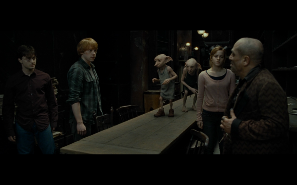 Harry Potter and the Deathly Hallows Part 1 - 525