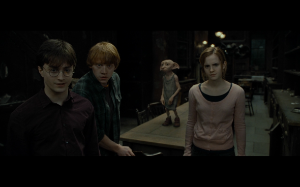Harry Potter and the Deathly Hallows Part 1 - 526
