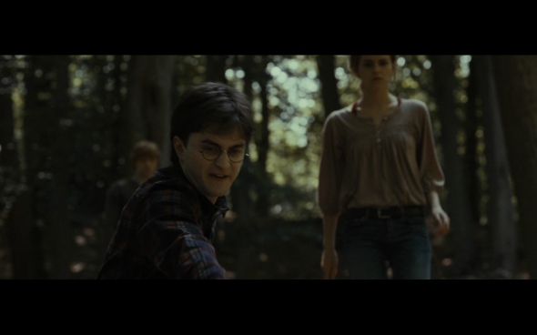 Harry Potter and the Deathly Hallows Part 1 - 678a