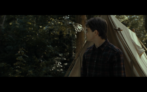 Harry Potter and the Deathly Hallows Part 1 - 693