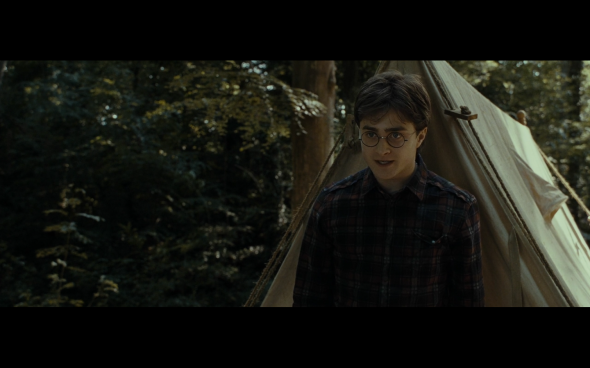 Harry Potter and the Deathly Hallows Part 1 - 695