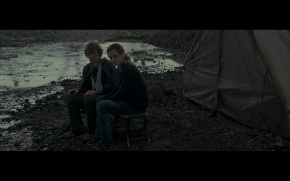 Harry Potter and the Deathly Hallows Part 1 - 717