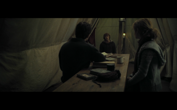 Harry Potter and the Deathly Hallows Part 1 - 734