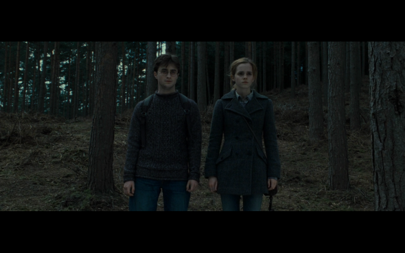 Harry Potter and the Deathly Hallows Part 1 - 752