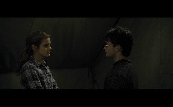 Harry Potter and the Deathly Hallows Part 1 - 771