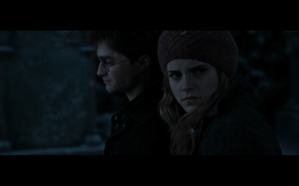 Harry Potter and the Deathly Hallows Part 1 - 820