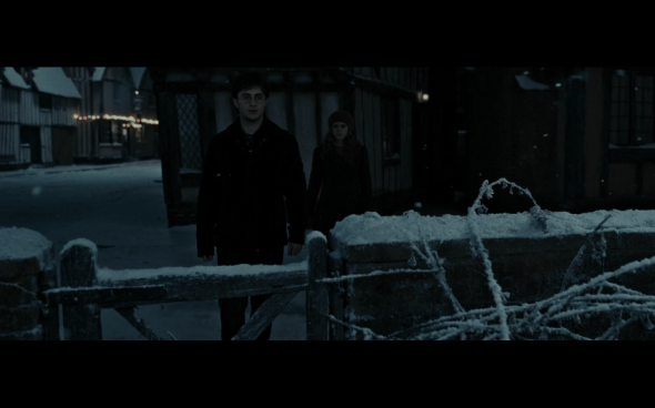 Harry Potter and the Deathly Hallows Part 1 - 825