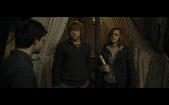 Harry Potter and the Deathly Hallows Part 1 - 987