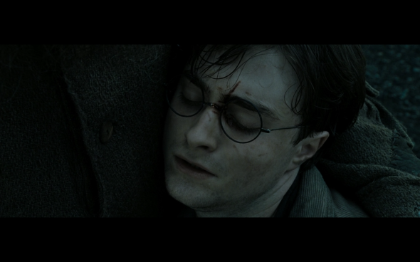 Harry Potter and the Deathly Hallows Part 2 - 1086