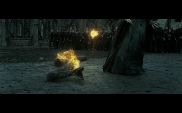 Harry Potter and the Deathly Hallows Part 2 - 1098