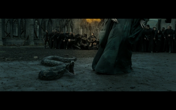 Harry Potter and the Deathly Hallows Part 2 - 1100