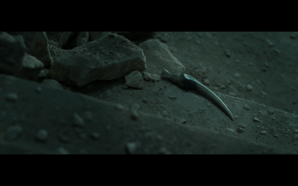 Harry Potter and the Deathly Hallows Part 2 - 1166