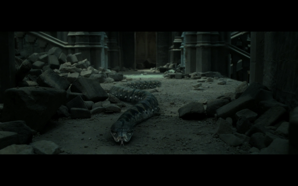 Harry Potter and the Deathly Hallows Part 2 - 1172