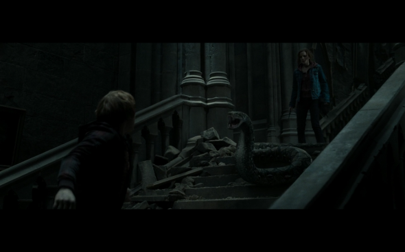 Harry Potter and the Deathly Hallows Part 2 - 1196