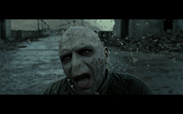 Harry Potter and the Deathly Hallows Part 2 - 1313
