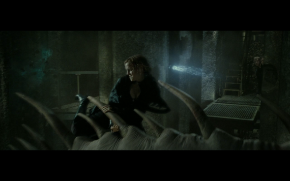 Harry Potter and the Deathly Hallows Part 2 - 139