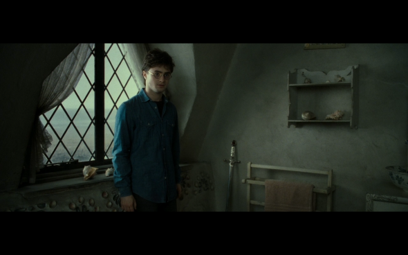 Harry Potter and the Deathly Hallows Part 2 - 26