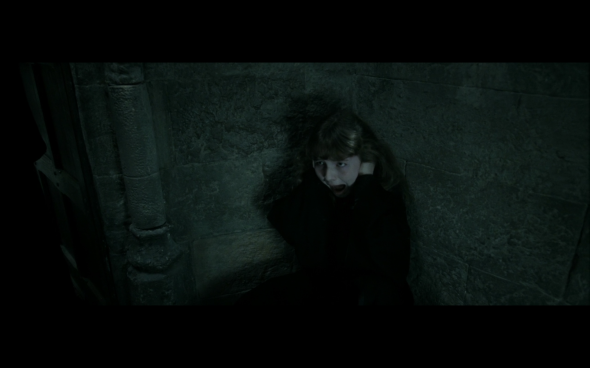 Harry Potter and the Deathly Hallows Part 2 - 284