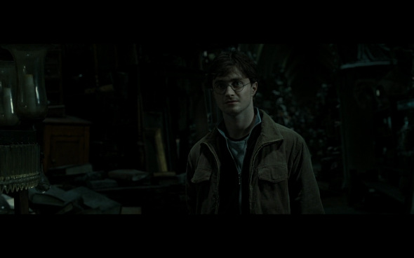 Harry Potter and the Deathly Hallows Part 2 - 562