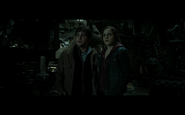 Harry Potter and the Deathly Hallows Part 2 - 587