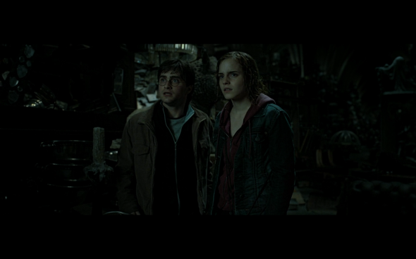 Harry Potter and the Deathly Hallows Part 2 - 588