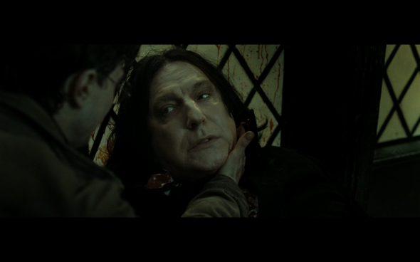 Harry Potter and the Deathly Hallows Part 2 - 737