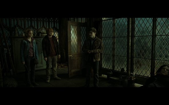 Harry Potter and the Deathly Hallows Part 2 - 752