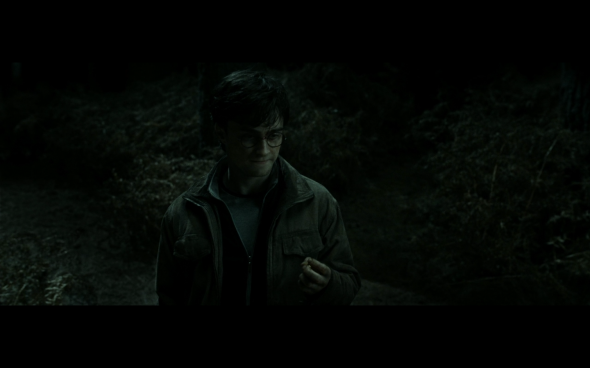 Harry Potter and the Deathly Hallows Part 2 - 909