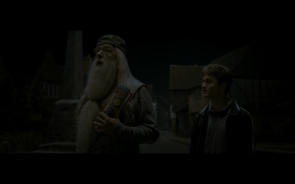 Harry Potter and the Half-Blood Prince - 106