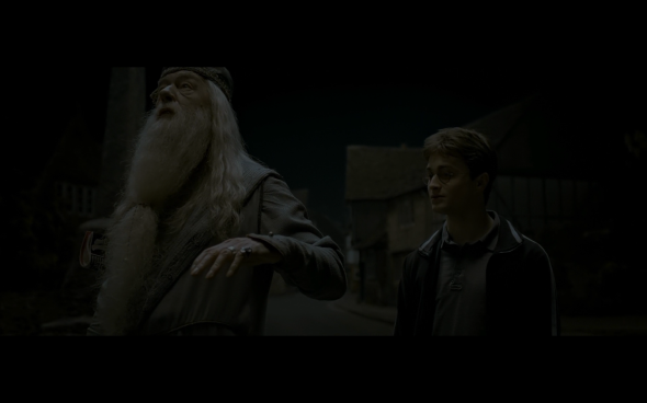 Harry Potter and the Half-Blood Prince - 107