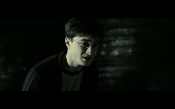 Harry Potter and the Half-Blood Prince - 1087