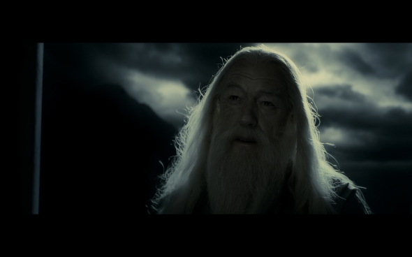 Harry Potter and the Half-Blood Prince - 1207