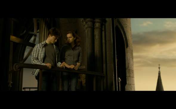 Harry Potter and the Half-Blood Prince - 1303