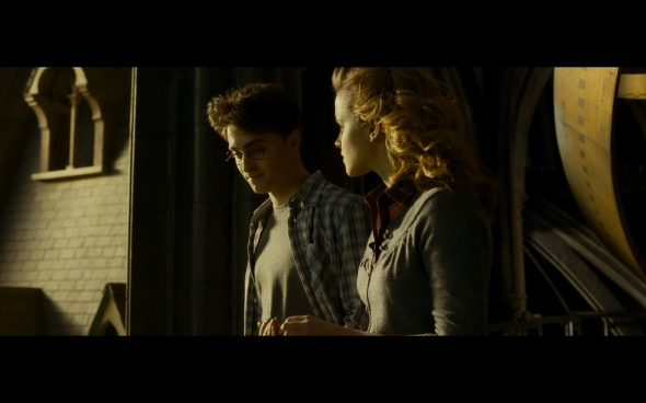 Harry Potter and the Half-Blood Prince - 1304