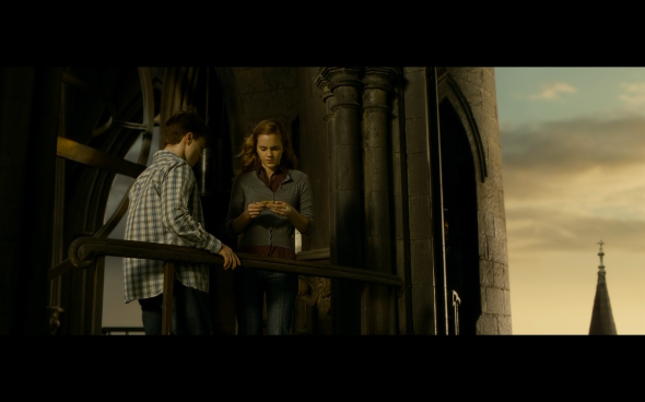 Harry Potter and the Half-Blood Prince - 1307