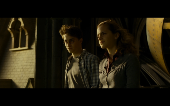 Harry Potter and the Half-Blood Prince - 1313