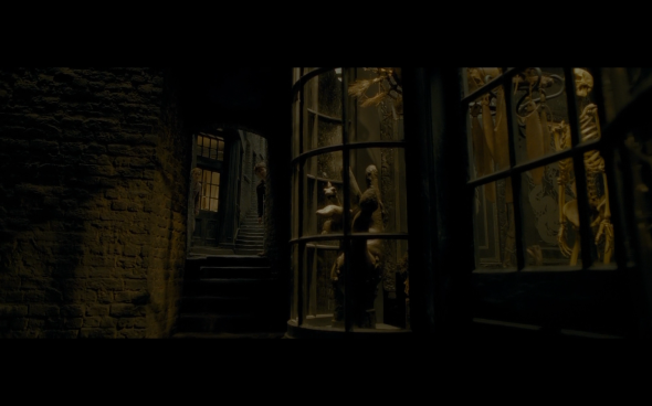 Harry Potter and the Half-Blood Prince - 208
