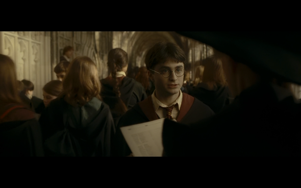 Harry Potter and the Half-Blood Prince - 309