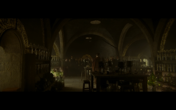 Harry Potter and the Half-Blood Prince - 313